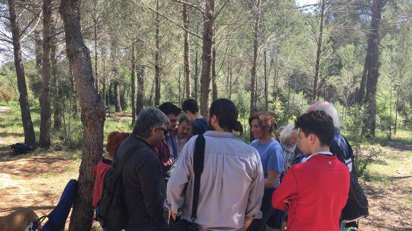 La trobada ha servit per recomptar el número d'arbres