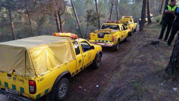 Un incendi crema 350 metres quadrats de zona forestal de Can Barata