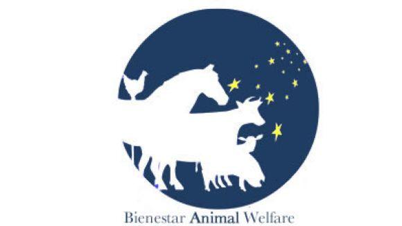 Boehringer Ingelheim entrega el primer Premi al Benestar Animal en Remugants dotat amb 15.000 euros